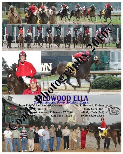 WILDWOOD ELLA  -  The Lighting and Power Solutions