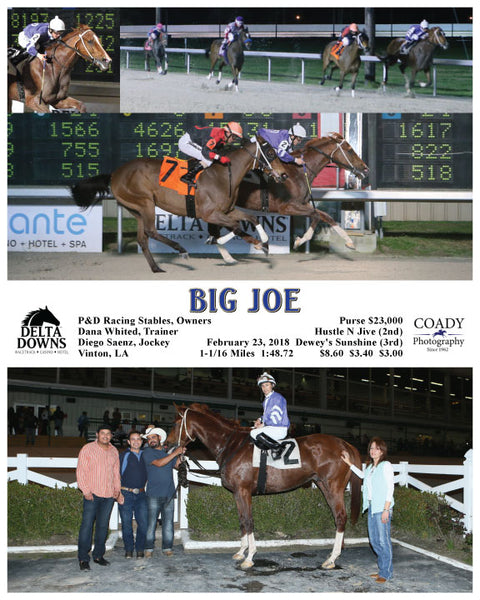 BIG JOE - 022318 - Race 05 - DED