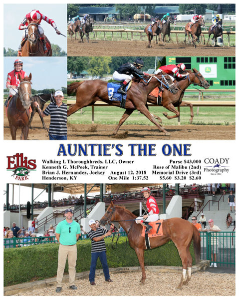 AUNTIE'S THE ONE - 081218 - Race 07 - ELP