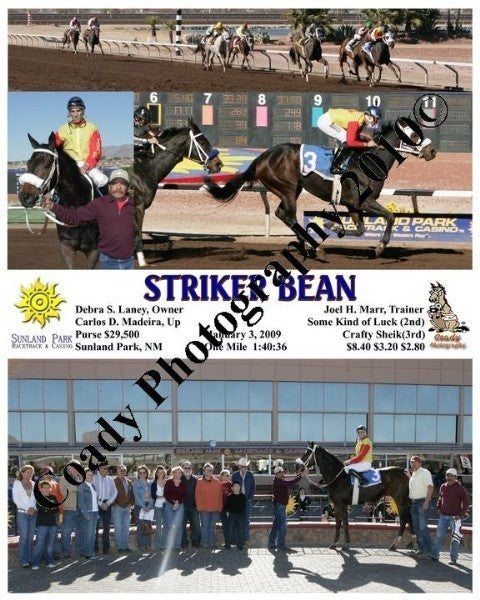 Striker Bean  -    -  1 3 2009