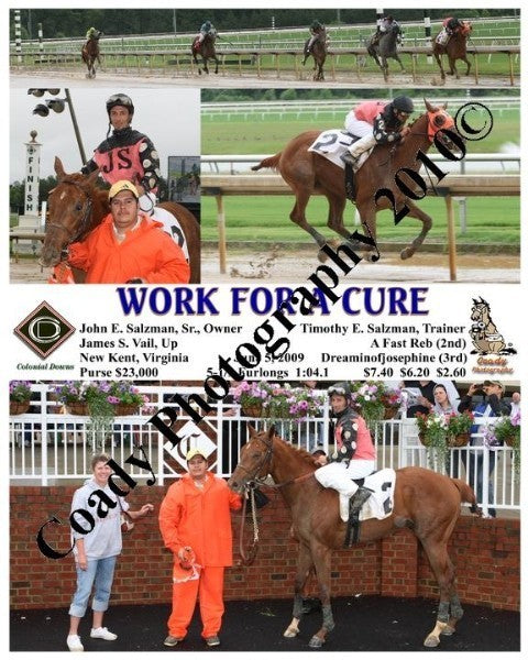 WORK FOR A CURE  -    -  6 5 2009