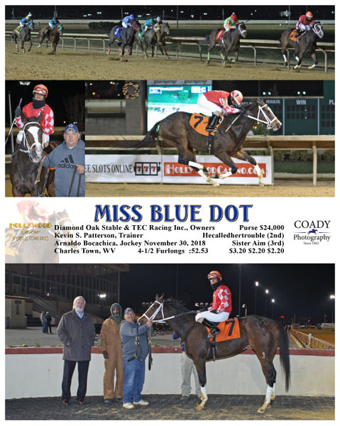MISS BLUE DOT - 113018 - Race 06 - CT