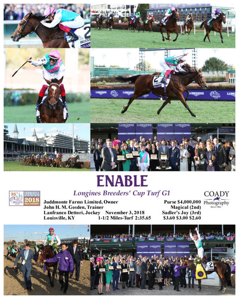 ENABLE - 110318 - Race 10 - CD