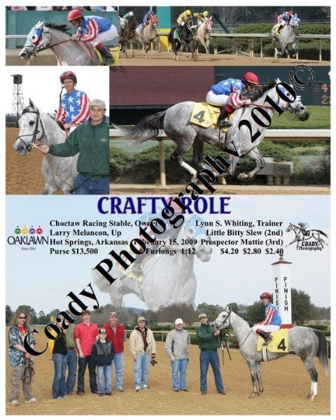CRAFTY ROLE  -    -  2 15 2009