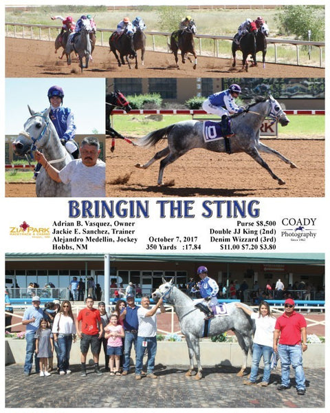 BRINGIN THE STING - 100717 - Race 01 - ZIA