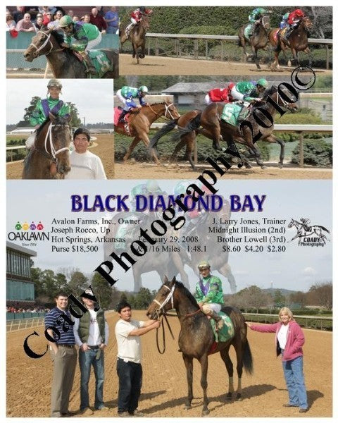 BLACK DIAMOND BAY  -    -  2 29 2008