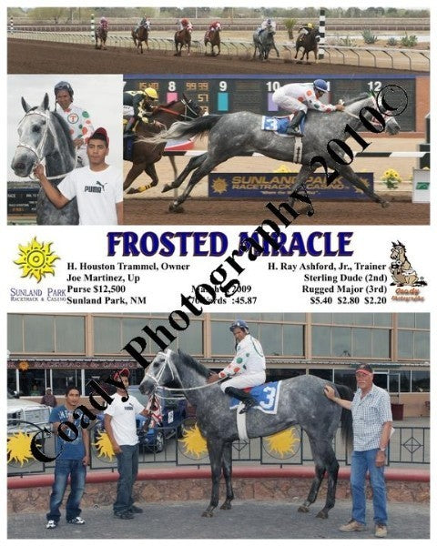 Frosted Miracle  -    -  3 6 2009