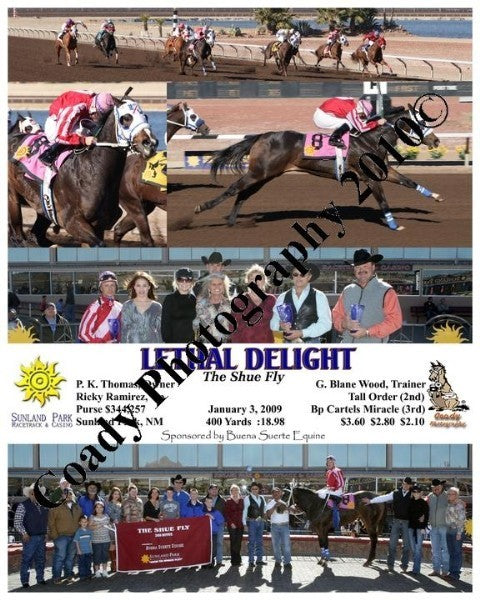 Lethal Delight  -  The Shue Fly  -  1 3 2009
