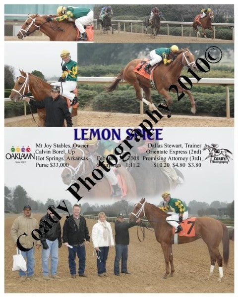 Lemon Spice  -    -  2 21 2008