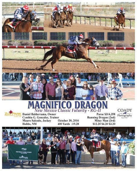MAGNIFICO DRAGON - 103016 - Race 10 - ZIA