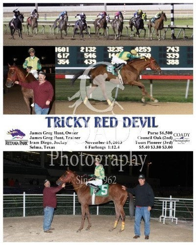 TRICKY RED DEVIL - 111513 - Race 08 - RET