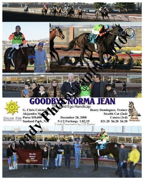 Goodbye Norma Jean  -  The Bold Ego Handicap  -  1