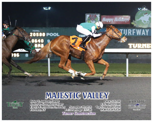 MAJESTIC VALLEY - 113018 - Race 07 - TP - A