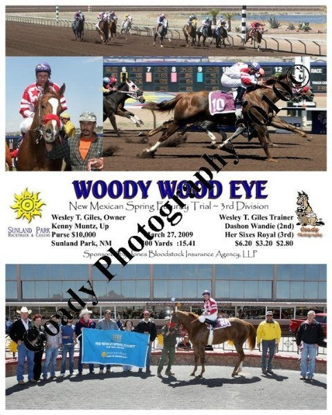Woody Wood Eye  -  New Mexican Spring Futurity Tri