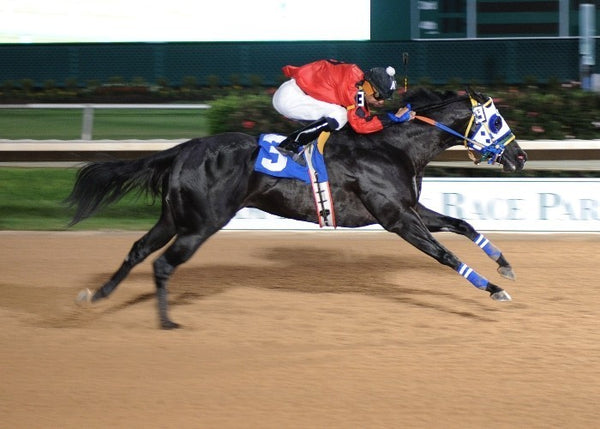 CHRISTMAS CHEER - Retama Park Derby