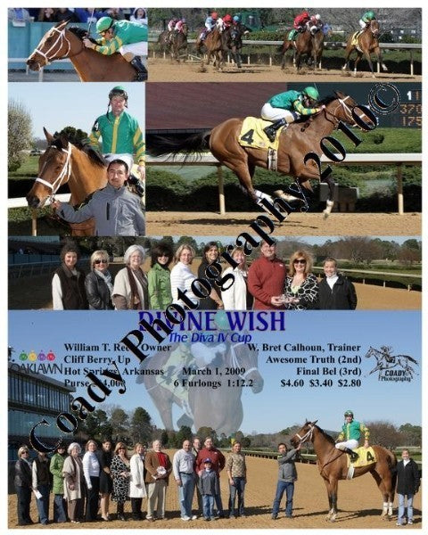 DIVINE WISH  -  The Diva IV Cup  -  3 1 2009