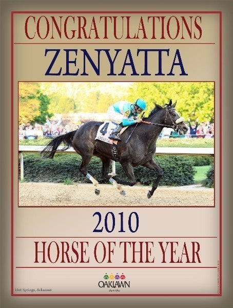 2010 Horse of the Year - Zenyatta - 18x24 Print