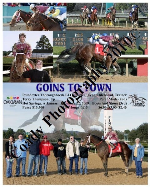 GOINS TO TOWN  -  The Golden Wedding Cup  -  1 31