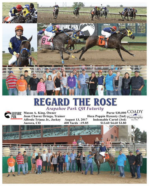 REGARD THE ROSE - 081317 - Race 09 - ARP
