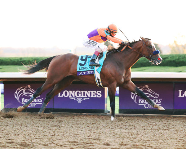 AUTHENTIC - Breeders' Cup Classic G1 - 11-07-20 - R12 - KEE - Finish 01