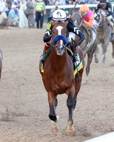 AUTHENTIC - The Kentucky Derby - 146th Running - 09-05-20 - R14 - CD - Inside Finish 03