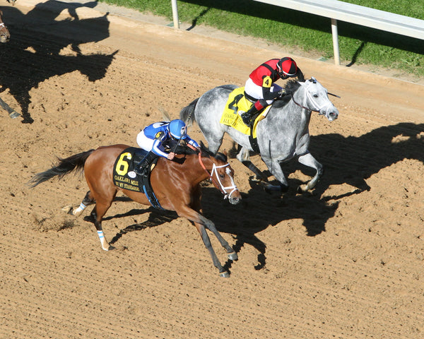 BY MY STANDARDS - The Oaklawn Mile - 3rd Running - 04-10-21 - R09 - OP