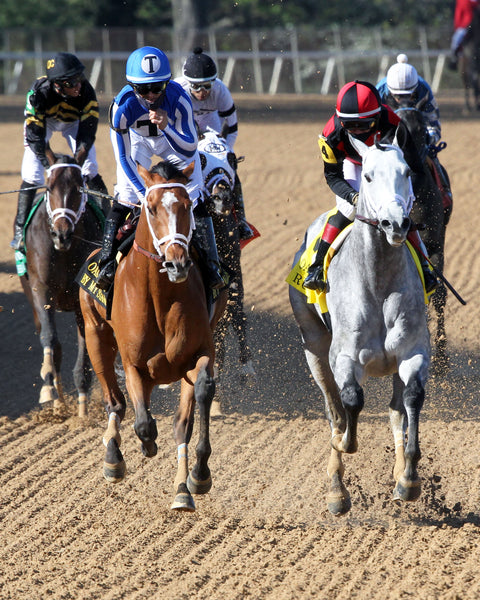BY MY STANDARDS - The Oaklawn Mile - 3rd Running - 04-10-21 - R09 - OP - Gallop Out 01