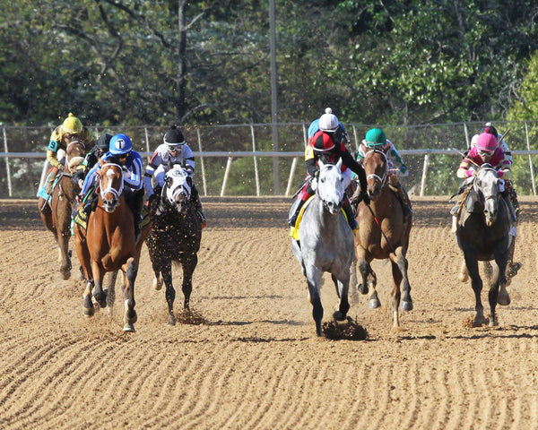 BY MY STANDARDS - The Oaklawn Mile - 3rd Running - 04-10-21 - R09 - OP - Head On 01