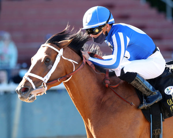 BY MY STANDARDS - The Oaklawn Mile - 3rd Running - 04-10-21 - R09 - OP - Inside Finish 01