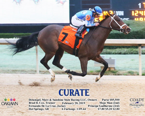 CURATE - 022819 - Race 08 - OP - A
