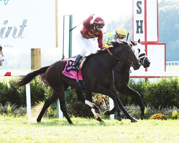 GUILDSMAN - Franklin-Simpson Stakes G3 - 4th Running - 09-16-20 - R09 - KD - Finish 02