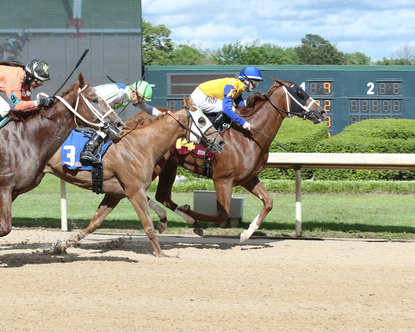 HOONANI ROAD - The Arkansas Breeders' Championship - 1st Running - 05-04-19 - R08 - OP - Finish 01
