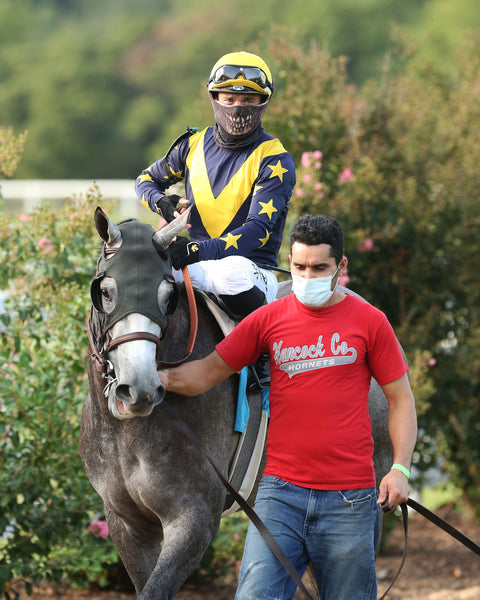 LIGHTHOUSE - The Music City Stakes BT - 1st Running - 09-15-20 - R11 - KD - Paddock 01