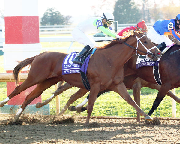 MONOMOY GIRL - Breeders' Cup Distaff G1 - 11-07-20 - R10 - KEE - Tight Turn 01