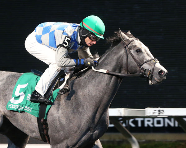 NEWSTOME - The Mark Mcdermott Stakes - The 8th Running - 10-16-19 - R06 - PID - Finish 03