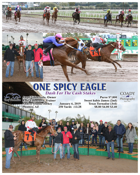 ONE SPICY EAGLE - Dash For The Cash Stakes - 01-06-19 - R02 - TUP
