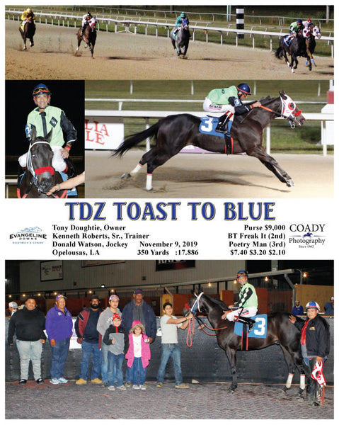 TDZ TOAST TO BLUE - 11-09-19 - R02 - EVD
