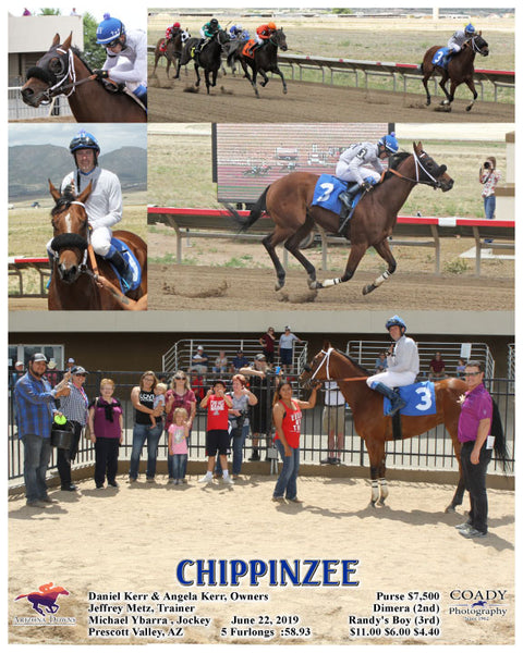 CHIPPINZEE - 06-22-19 - R03 - AZD