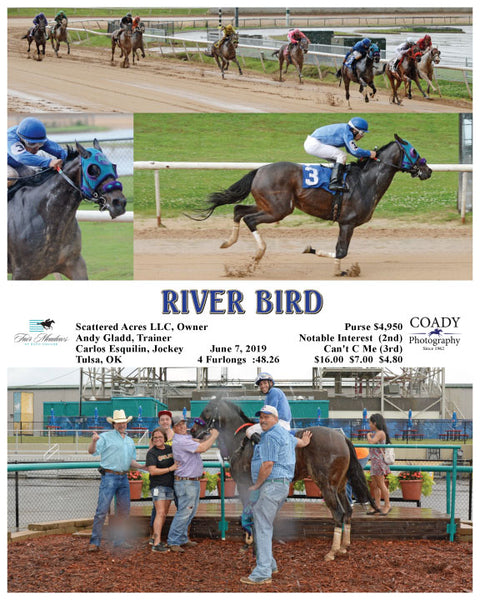 RIVER BIRD - 06-07-19 - R04 - FMT
