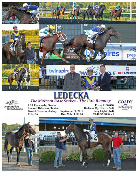 LEDECKA - The Malvern Rose Stakes - The 13th Running - 09-09-19 - R05 - PID