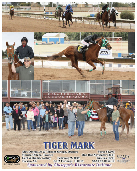 TIGER MARK - 02-09-19 - R05 - RIL