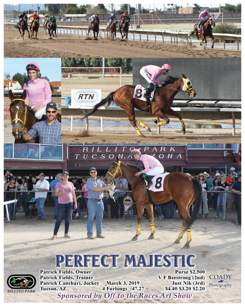 PERFECT MAJESTIC - 03-03-19 - R06 - RIL