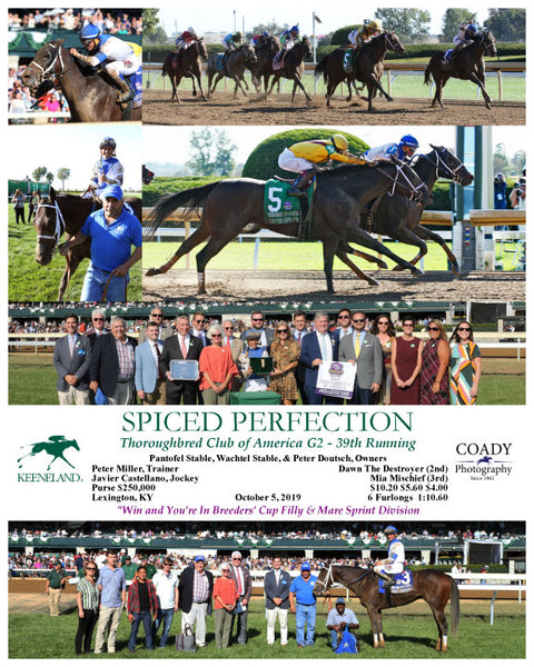 SPICED PERFECTION - Thoroughbred Club of America G2 - 39th Running - 10-05-19 - R07 - KEE