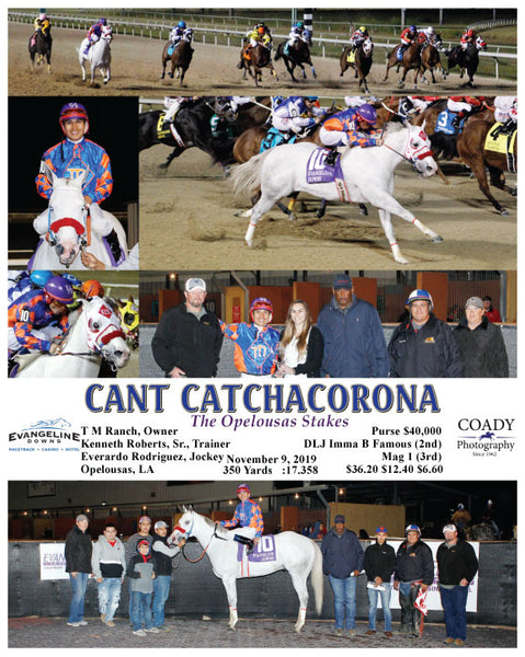 CANT CATCHACORONA - The Opelousas Stakes - 11-09-19 - R08 - EVD