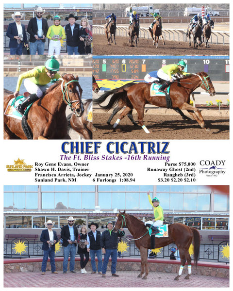 CHIEF CICATRIZ - The Ft. Bliss Stakes -16th Running - 01-25-20 - R08 - SUN