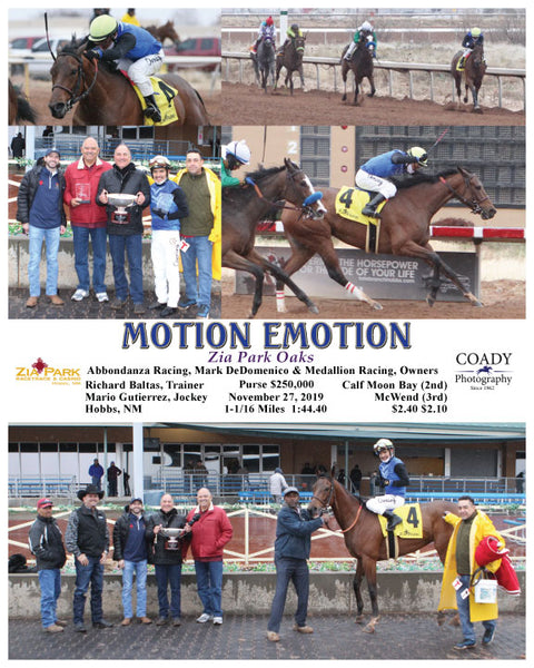 MOTION EMOTION - Zia Park Oaks - 11-27-19 - R08 - ZIA