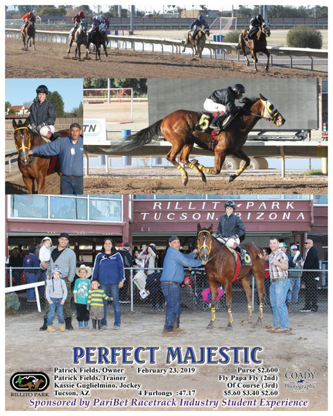PERFECT MAJESTIC - 02-23-19 - R08 - RIL