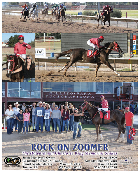 ROCK ON ZOOMER - The Howard and Charlotte King Memorial Stakes - 03-16-19 - R08 - RIL