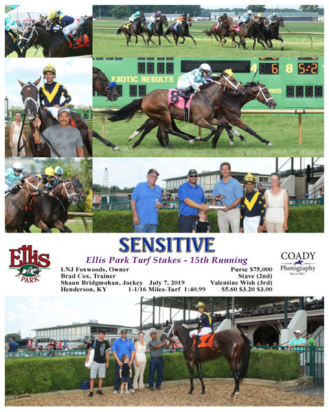 SENSITIVE - Ellis Park Turf Stakes - 15th Running - 07-07-19 - R08 - ELP