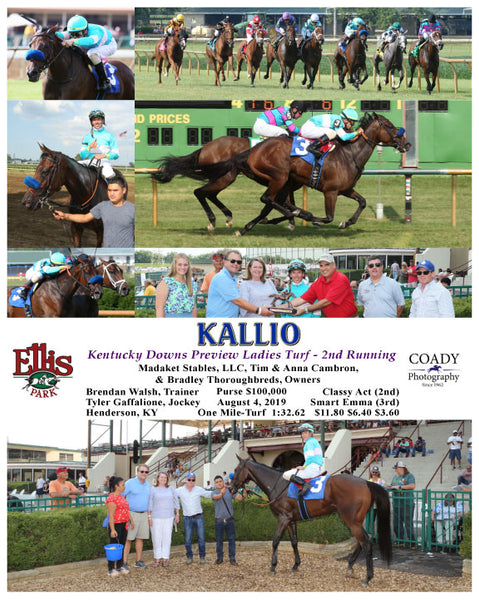 KALLIO - Kentucky Downs Preview Ladies Turf - 2nd Running - 08-04-19 - R09 - ELP